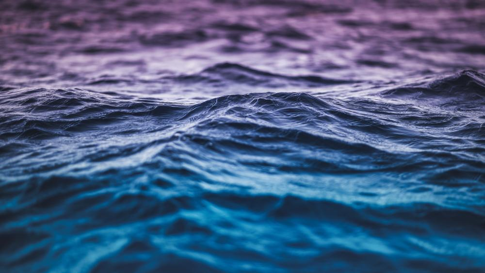 Blue and purple gradient waves wallpaper