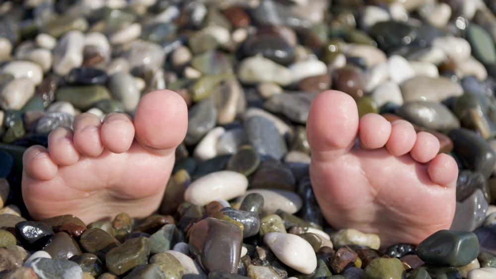 Toes from the pebble wallpaper