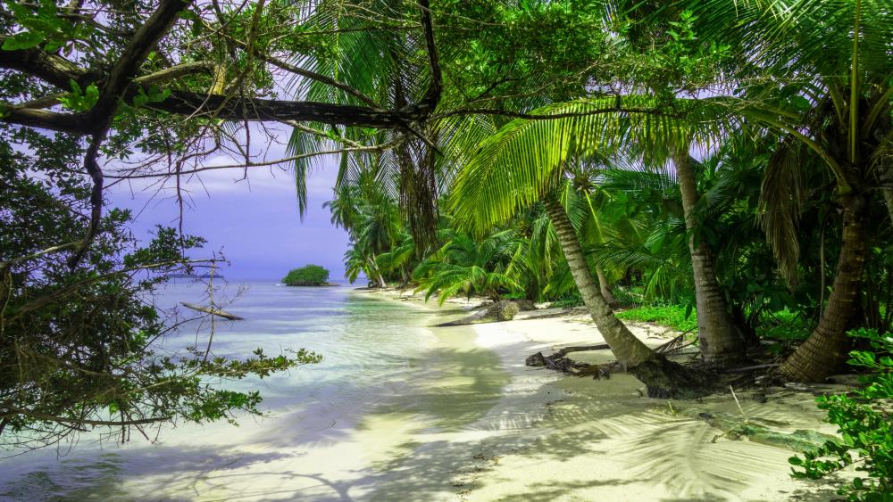 Caribbean beach in Panama wallpaper