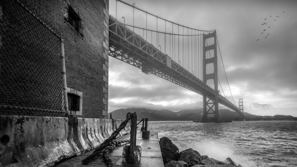 Golden Gate Bridge monochrome photo wallpaper