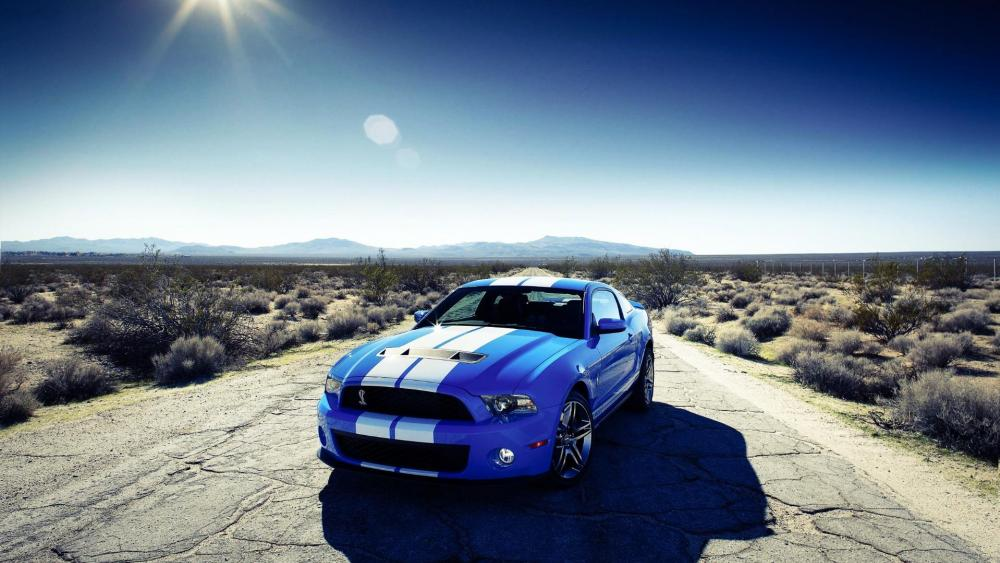 Ford Shelby wallpaper