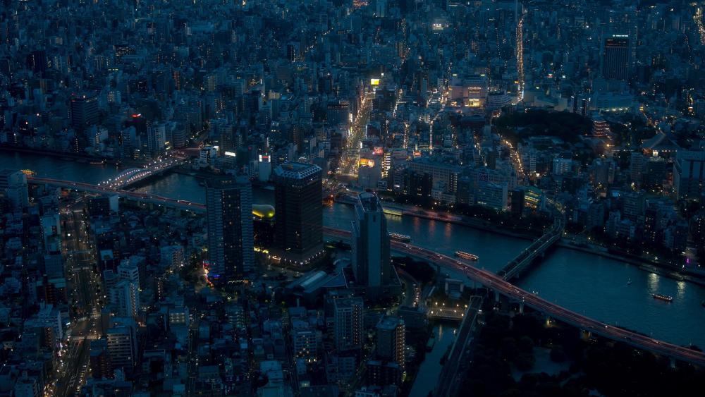 Tokyo Night wallpaper