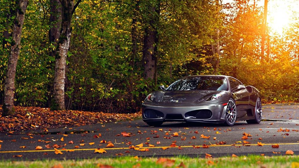 Ferrari 430, Scuderia in Park wallpaper
