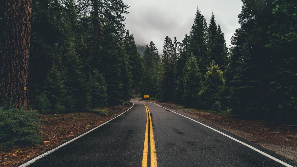 Road surface wallpaper