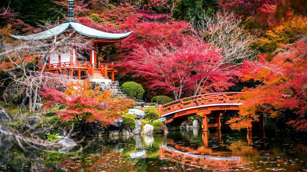 Daigo-ji Temple at fall wallpaper