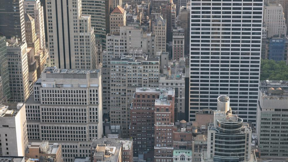 New York Skyscrapers wallpaper