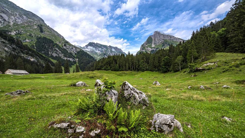 Beauty and peace of Switzerland nature wallpaper