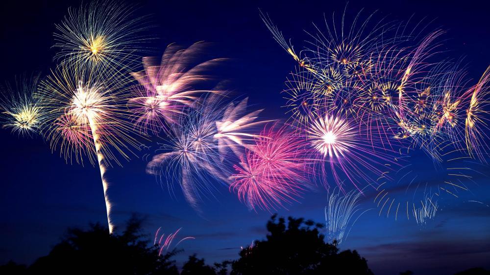 Tama River Fireworks wallpaper