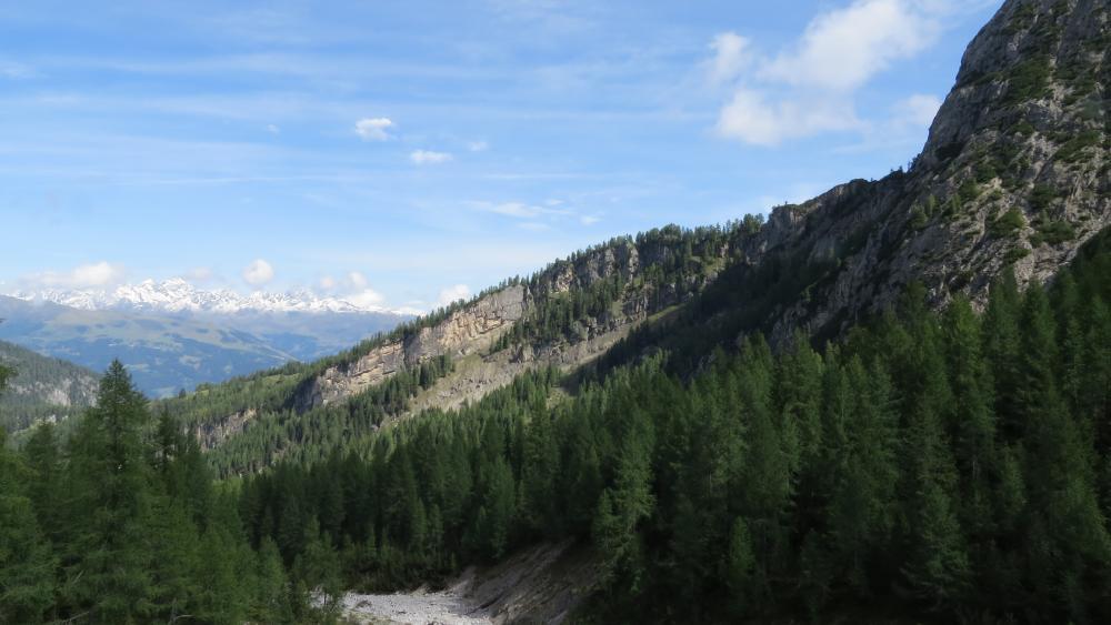 alpine landscape wallpaper