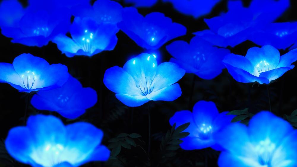 Illuminating blue flowers wallpaper