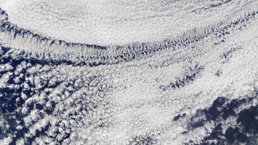 Open- and Closed-Celled Clouds over the Pacific wallpaper