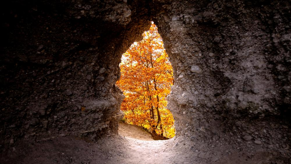 Dark And Rocky Cave With Yellow wallpaper