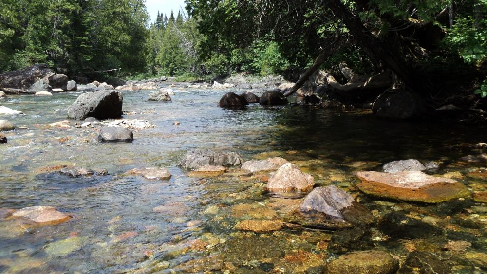 Clear waters and polished pebbles on river bed wallpaper