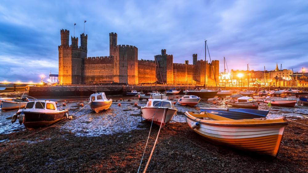 Caernarfon Castle wallpaper
