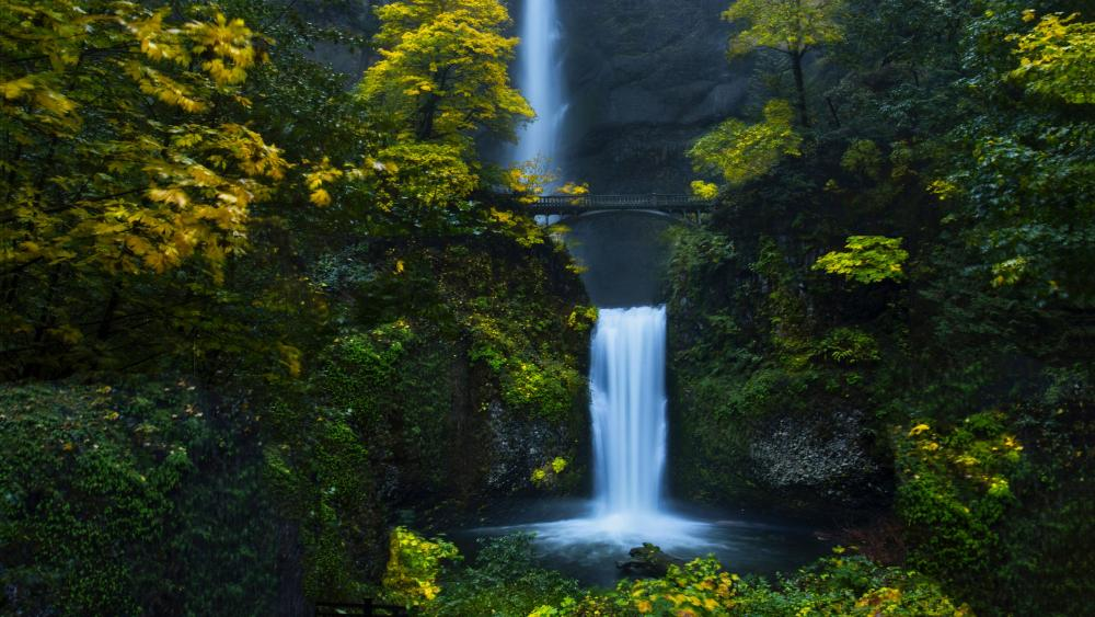 Multnomah Falls wallpaper
