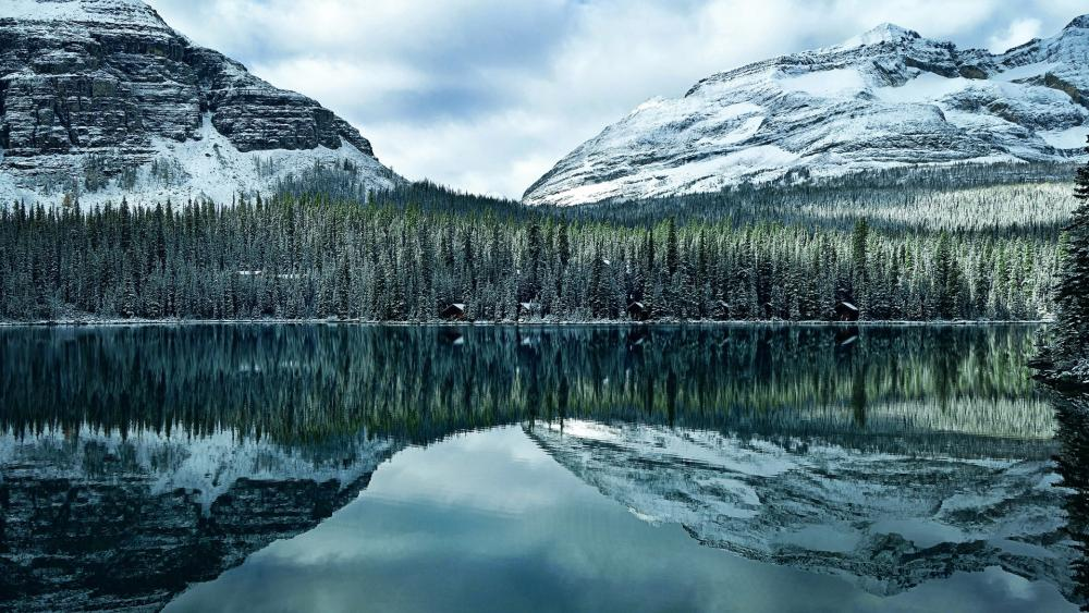 Lake O'Hara, Yoho National Park wallpaper