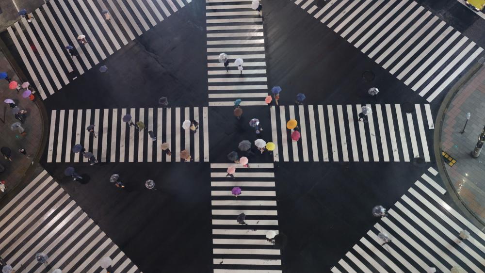 Sukiyabashi Crossing wallpaper