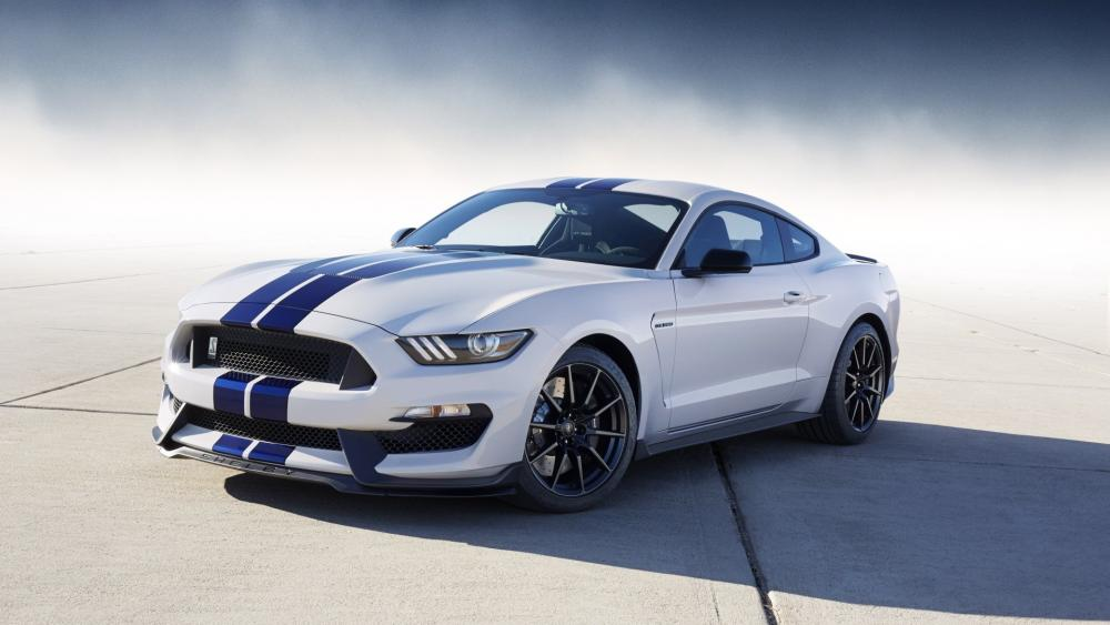 Shelby Ford Mustang GT500 wallpaper