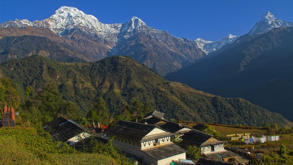 Himalayan wallpaper