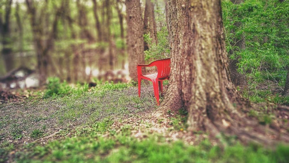 Red Chair of the Woods wallpaper