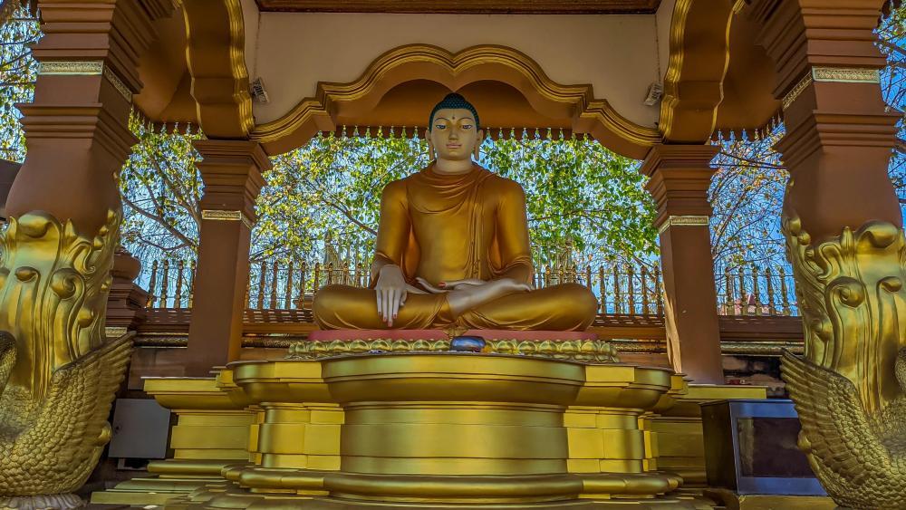 Lord Buddha wallpaper