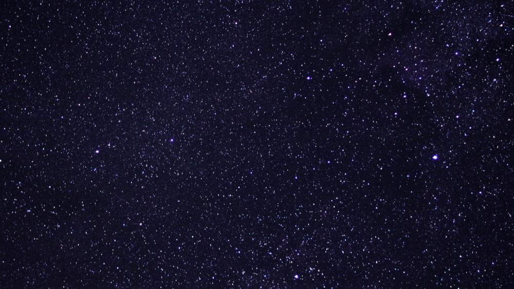 Field of Stars wallpaper