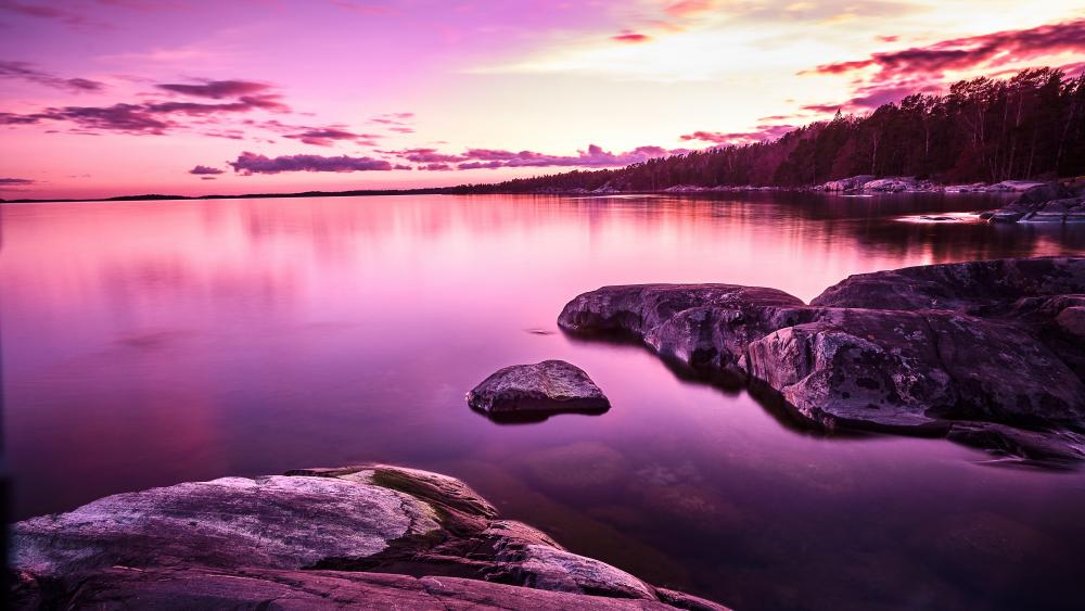 Purple sunset by the lake wallpaper
