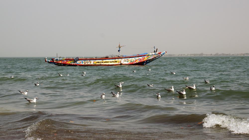 Fishing boat in Gambia wallpaper