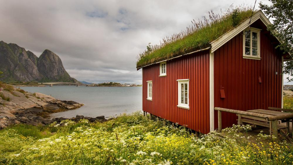 Hamnoy turf house wallpaper