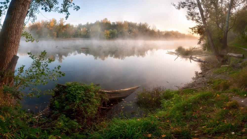 Autumn fog over the water wallpaper