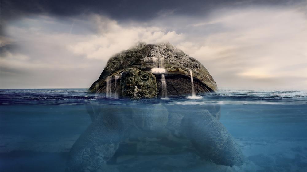 Surrealistic turtle wallpaper