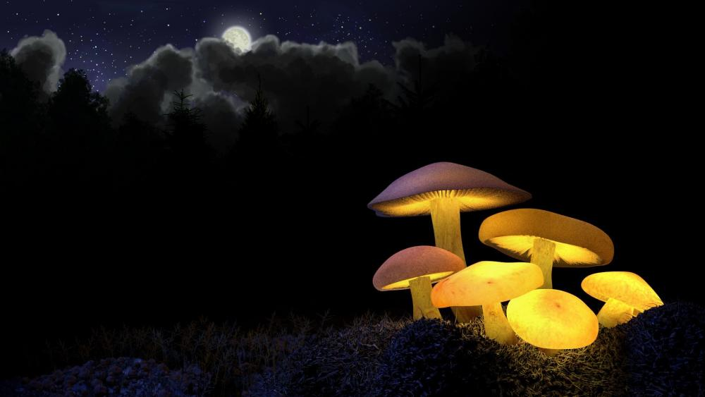 Glowing mushrooms wallpaper