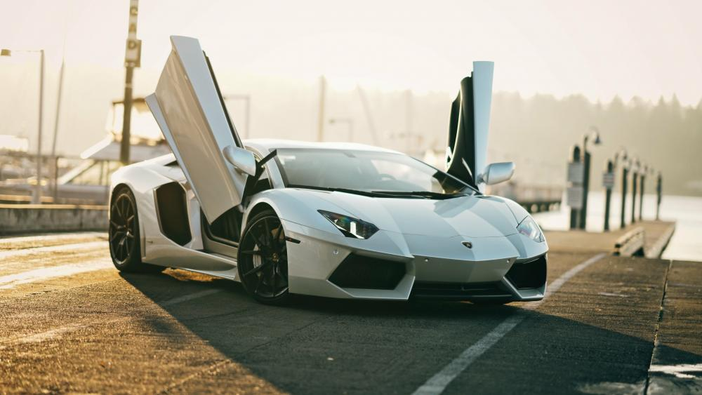 White Lamborghini Aventador wallpaper