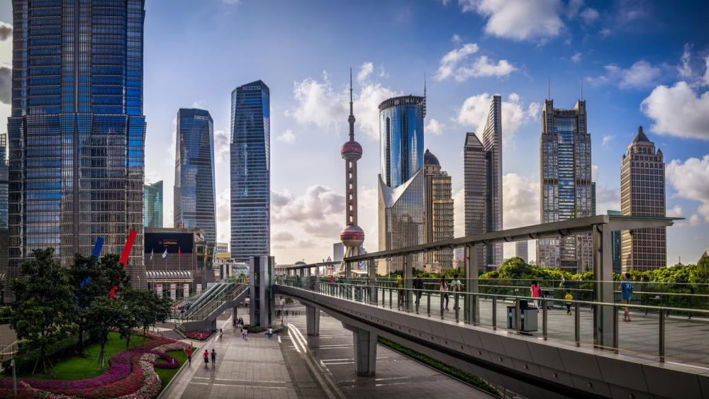 Pudong Skyline with the Oriental Pearl Tower wallpaper