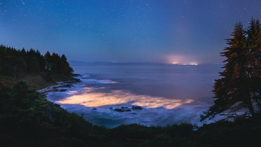 Blue Tears bioluminescence Vancouver Island wallpaper