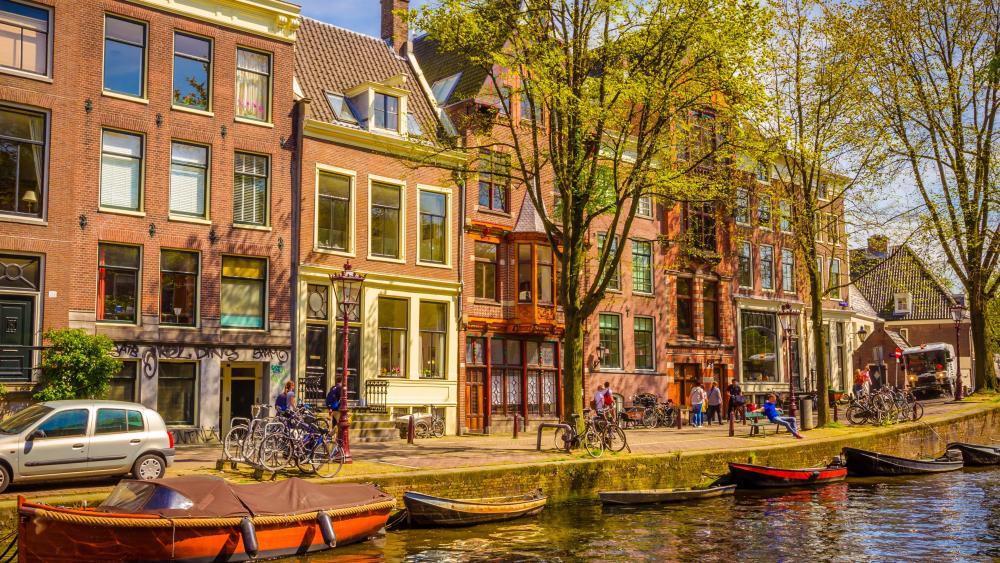 Amsterdam at daytime wallpaper