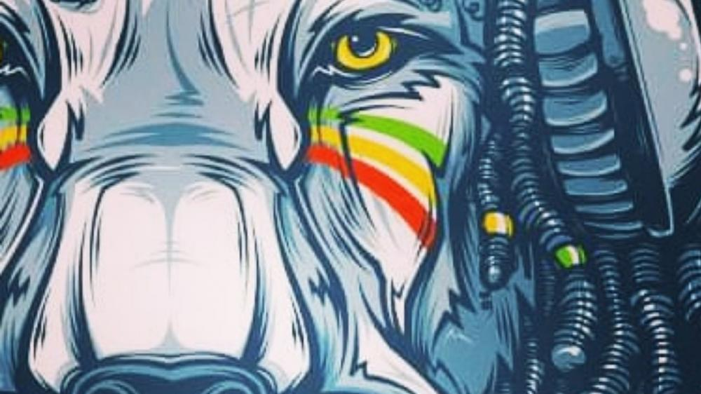 Reggae lion wallpaper