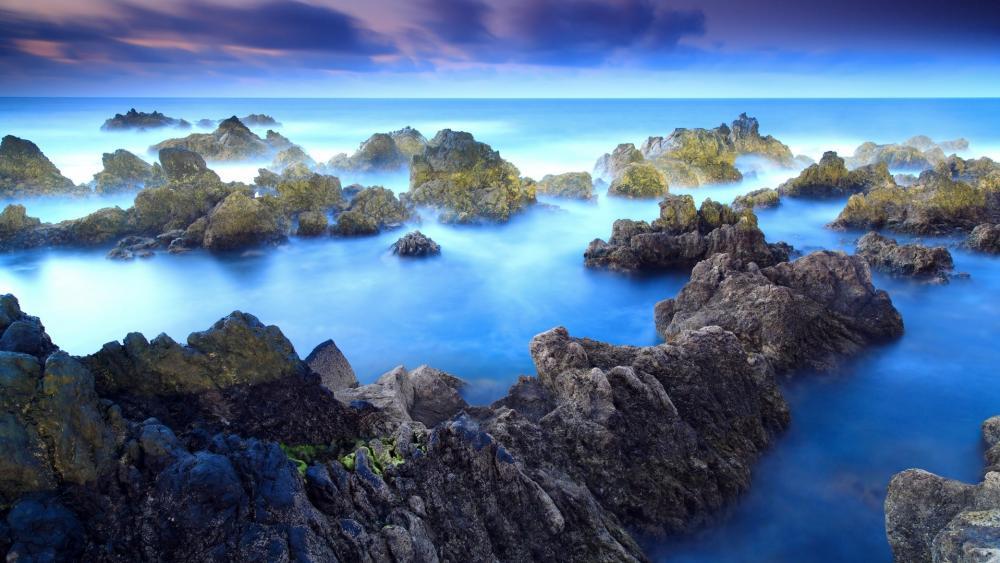 Coastline at Porto Moniz, Madeira islands wallpaper