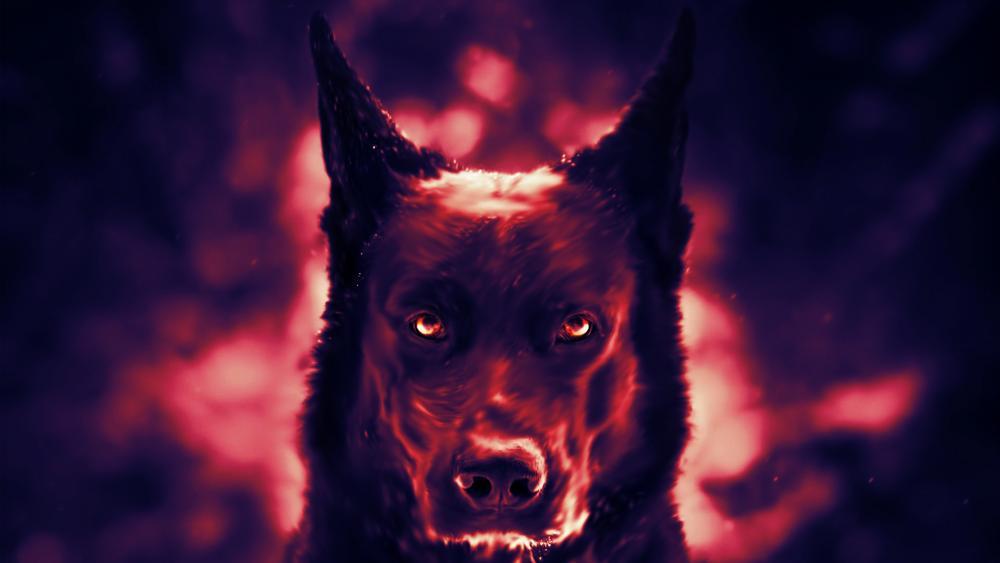 Red eyed dog wallpaper
