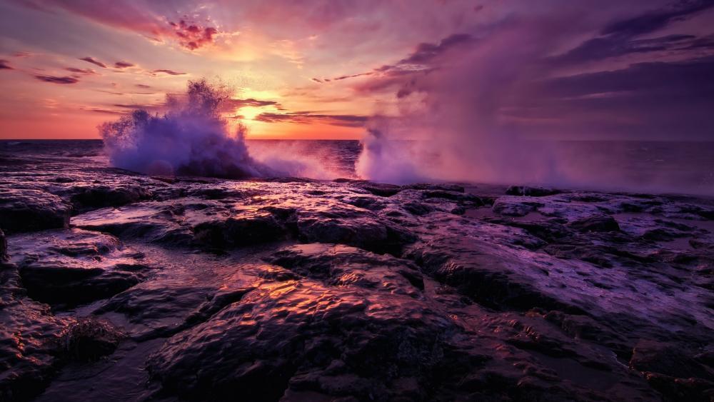 Purple splash wallpaper