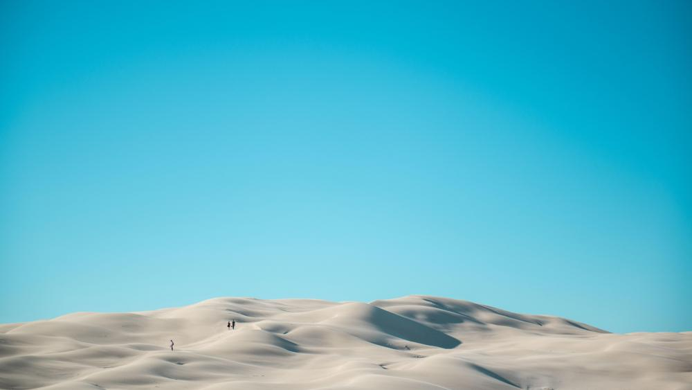 White dunes wallpaper