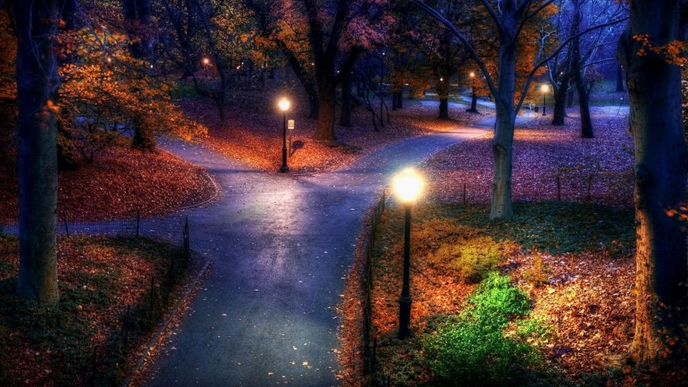City park at fall wallpaper