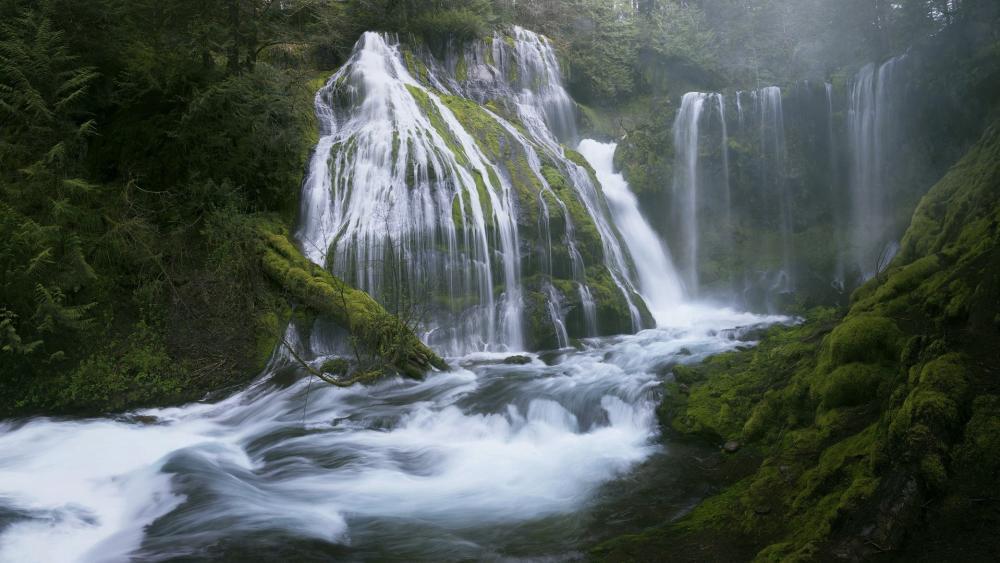 Panther Creek Falls wallpaper