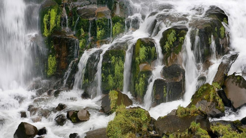 Waipunga Falls wallpaper