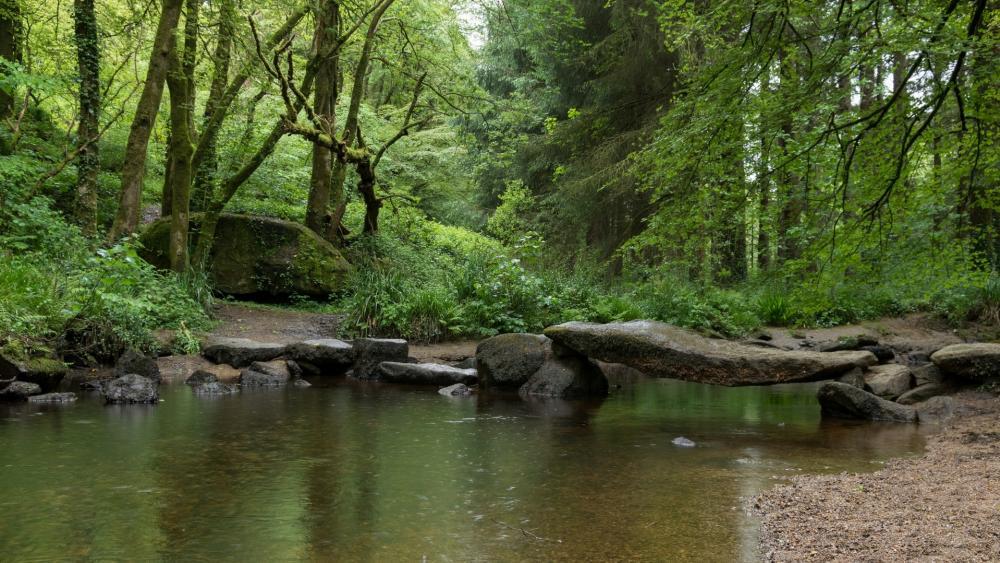 Granite bridge in Huelgoat Forest in Brittany (France) wallpaper