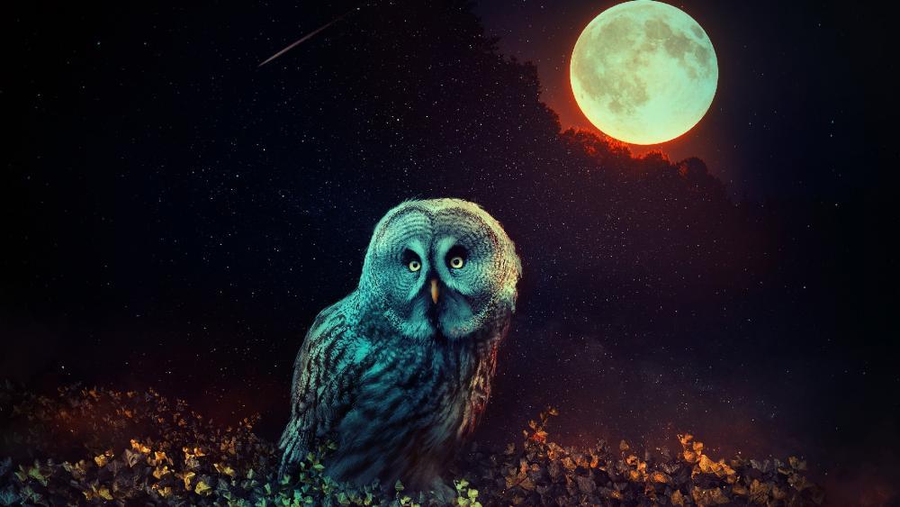 Mystic owl at full moon wallpaper