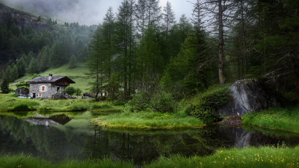 French Alps at summer wallpaper