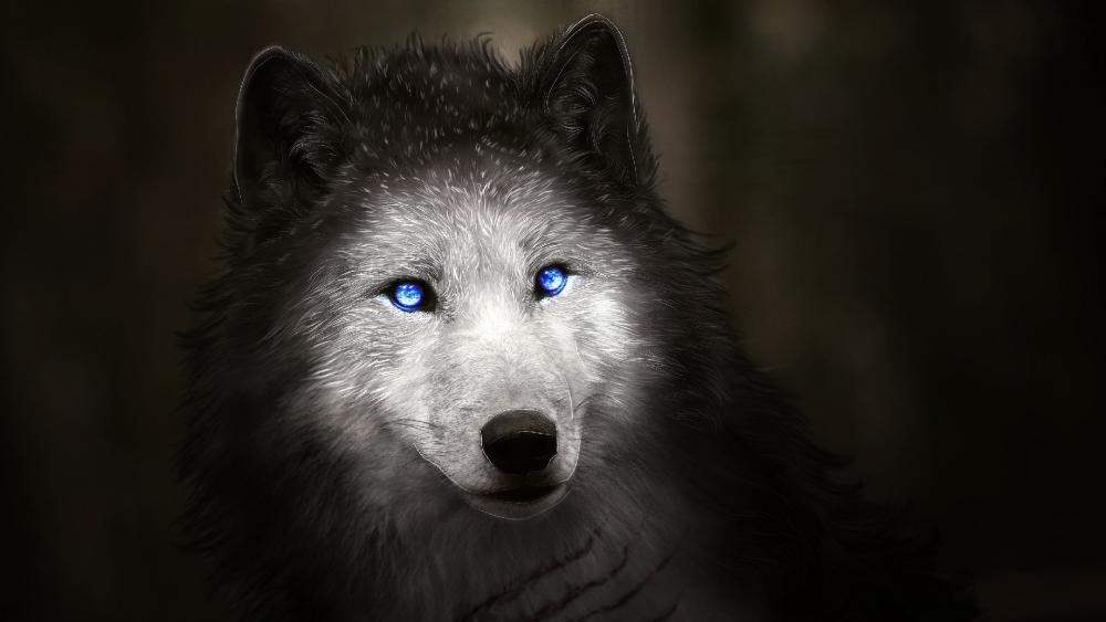 Blue wolf eyes wallpaper