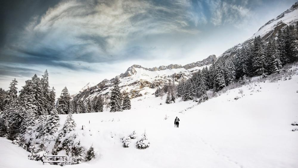Winter hiking wallpaper