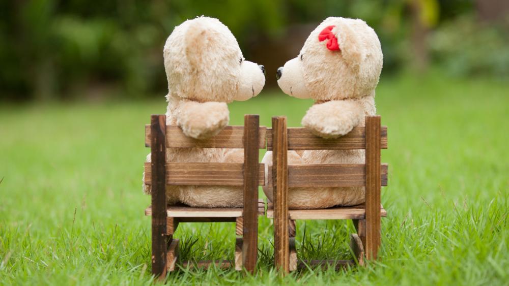 Teddy Bear couple wallpaper